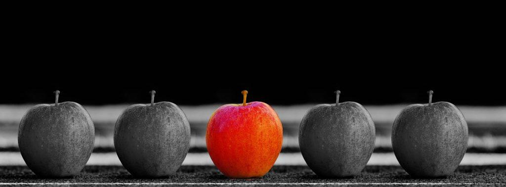 Faire des choix pour devenir un meilleur parieur et gagner plus.